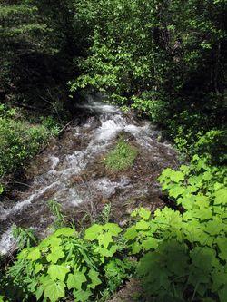 CreekHike